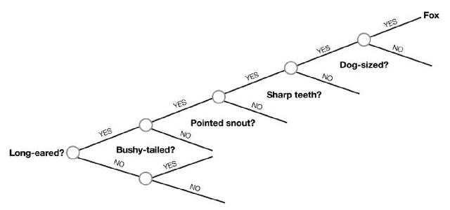 How a tree structure helps simplify search: A detection algorithm for 'Fox.'